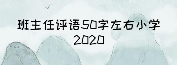 班主任評語50字左右小學2020